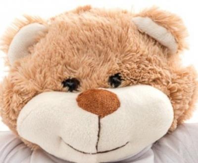 Ursulet de plus Teddy