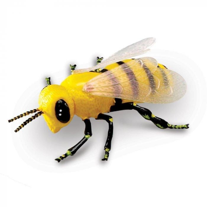 Set insecte - figurine mari pentru bebelusi