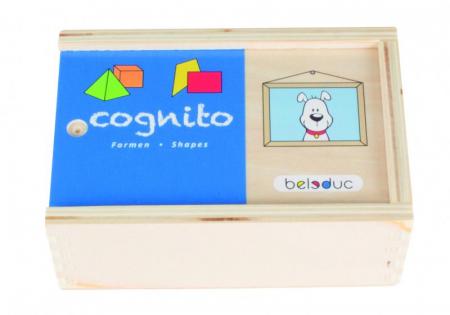 Cognito - Set de lemn pentru invatare forme si culori