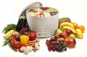 Uscator de fructe,legume si polen 500