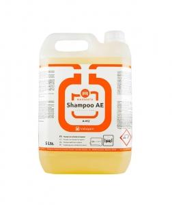 Sampon auto cu activator spuma, Shampoo AE, 5 L