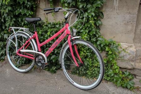 Bicicleta Adriatica Boxter HP 21V Donna