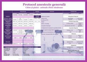 Plansa Protocol anestezie generală 50 x 70 cm