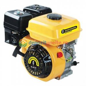 Motor benzina 4 timpi OHV Gospodarul Profesionist GP-170F, 7 CP, 2017, Uz general