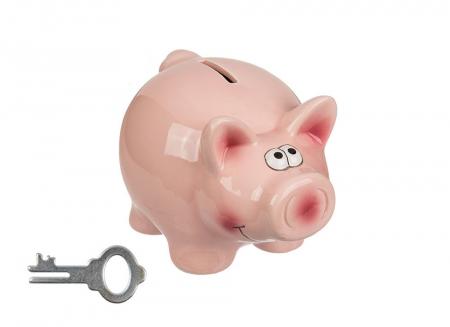 Pusculita porc cu cheita