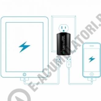 Incarcator DUAL USB LEMNAR pentru iPad/Tablete + Smartphone 3,1 A ACUSB31E4