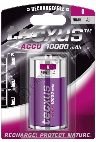 Acumulator Tecxus D, 10000 mAh,blister 1 buc-big