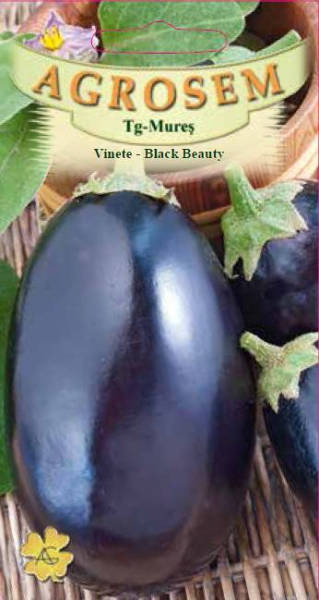 Vinete - Black Beauty