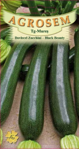 Dovlecel Zucchini - Black Beauty