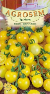 Tomate-Yellow Cherry