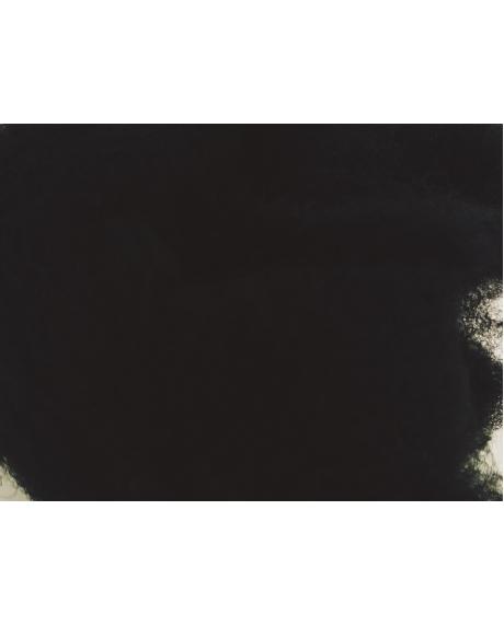 Lana negru (50 g)