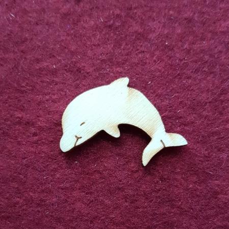 Delfin mic