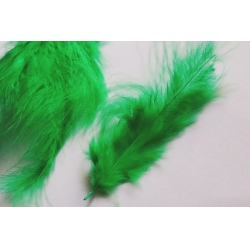 Pene decor verde (100 buc)