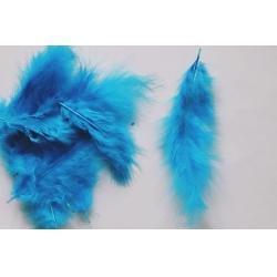Pene decor albastru (100 buc)