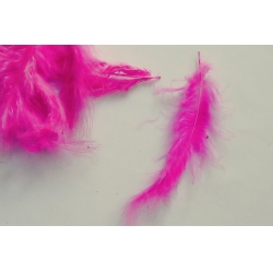 Pene decor magenta (100 buc)
