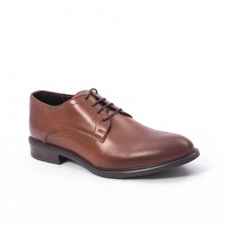Pantofi eleganti barbati piele naturala, Catali 192545 coniac0