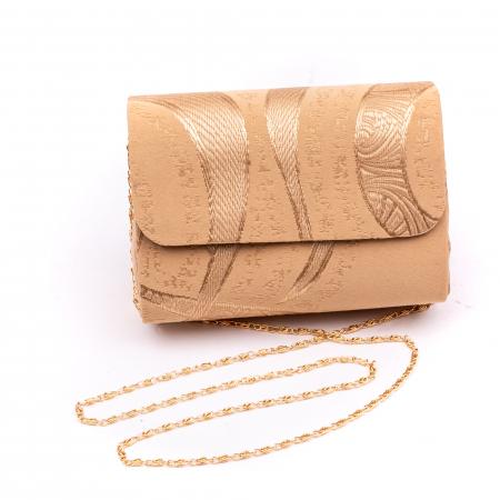 Plic  butoias 002 textil bej auriu