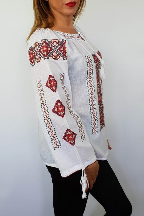 Ie Traditionala Zaraza 2