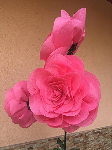 Flori supradimensionate (flori uriase)
