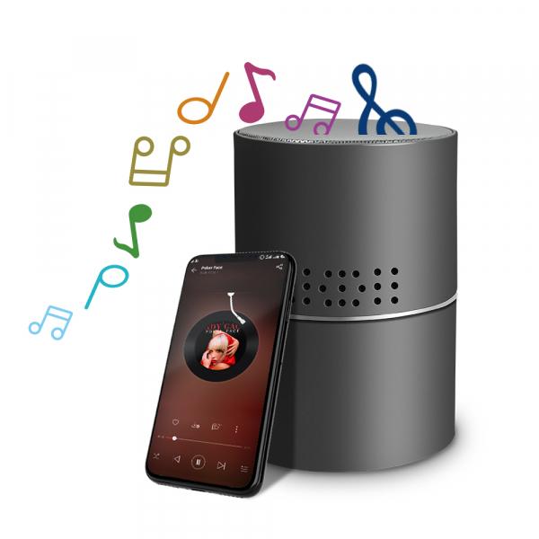 Boxă Bluetooth cu Cameră Video Spy, WI-FI, IP, P2P+DVR, Senzor de Mișcare, Lentilă Rotativă 330 de Grade 1