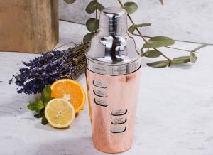 Cocktail Shaker cu 8 Retete