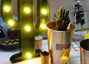 Lampa de Veghe LED Cactus6