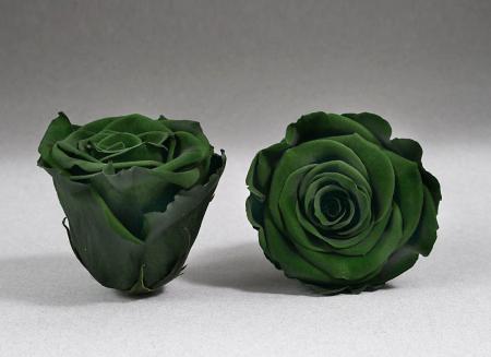 Fir de trandafir criogenat Verde0