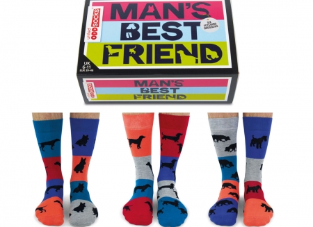 Set 6 sosete Man's Best Friend0