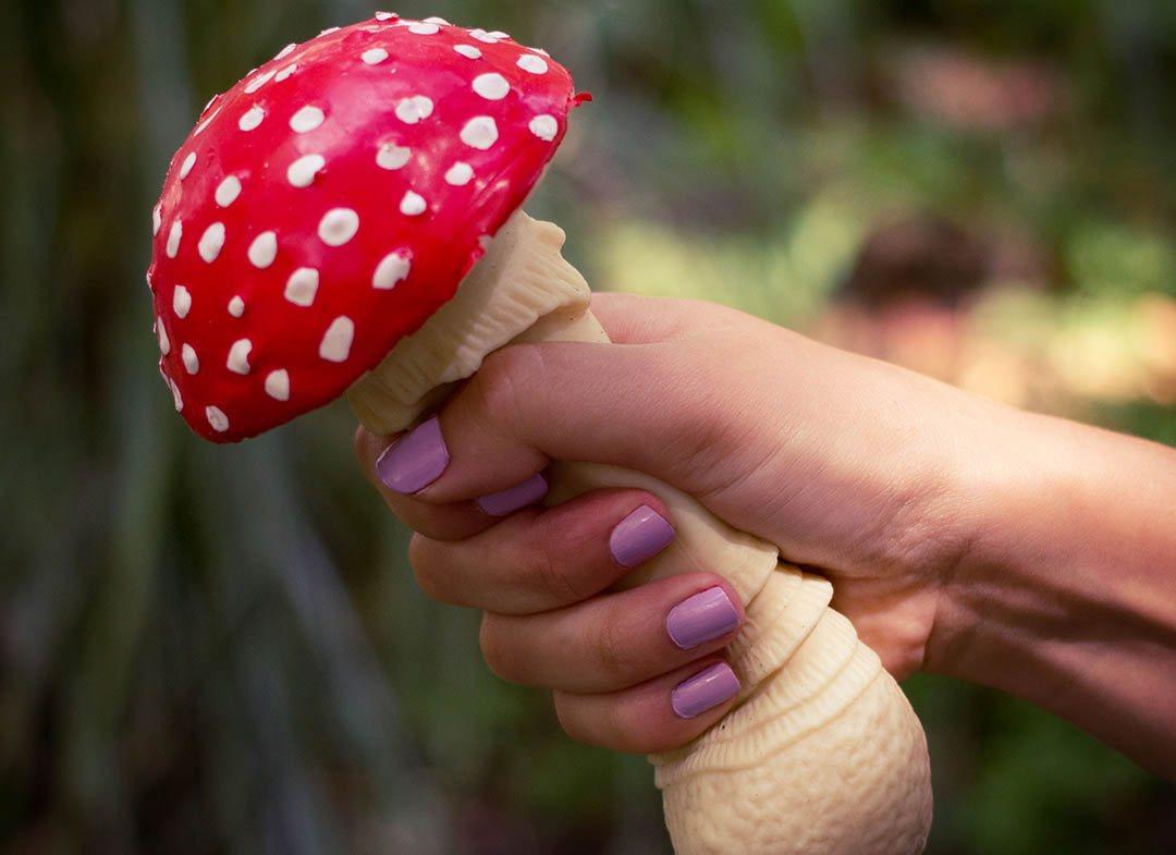 Cadouri viitoare mamici ciuperca antistres