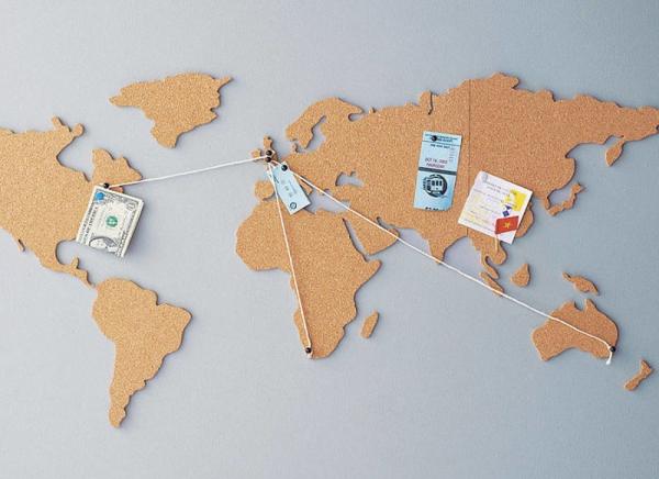 Harta lumii din pluta
