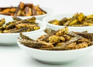 Lacuste comestibile cu Curry