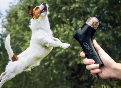 Lansator Pet Snack