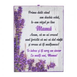 Tablou Canvas La Multi Ani, Mama! 20X15 CM2
