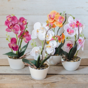Flori decor - 30x12 cm