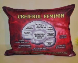 Perna Creierul feminin - 33x26 cm