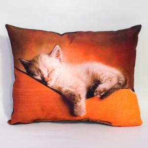 Perna Pisica #2 - 33x26 cm