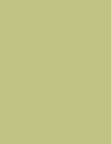 Colorama fundal Fern