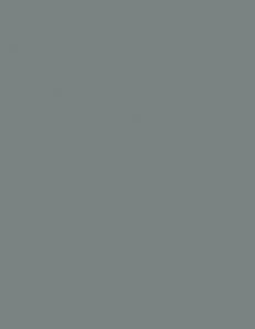 Colorama fundal PVC Slate