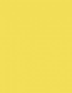 Colorama fundal PVC Daffodil