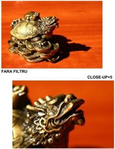 B+W filtru Close-up +5 72mm