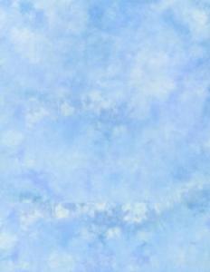 Lastolite fundal panza Maine 3 x 3.5m