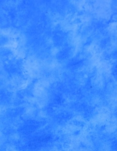 Lastolite Fundal panza Florida 3 x 3.5m