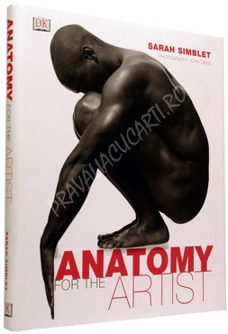 Anatomy for the Artist 0