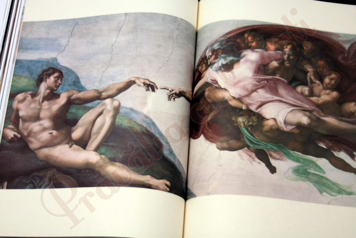 Michelangelo : The Complete Sculpture, Painting, Architecture 6