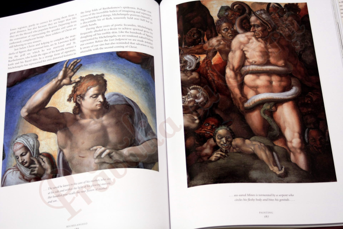 Michelangelo : The Complete Sculpture, Painting, Architecture 9
