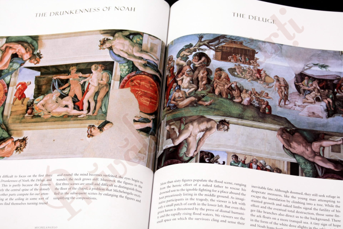Michelangelo : The Complete Sculpture, Painting, Architecture 14