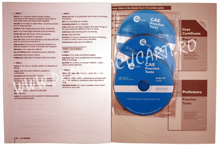CAE Certificate Practice Tests with Key 2