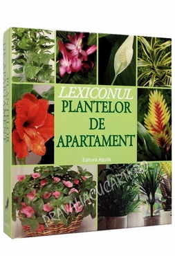 Lexiconul plantelor de apartament 0