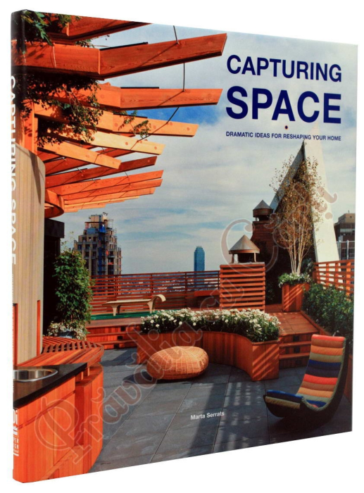 Capturing Space: Dramatic Ideas for Reshaping Your Home 1