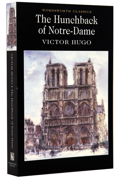 The Hunchback of Notre-Dame 0